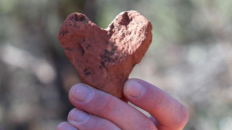 Votre cœur nous tient à cœur