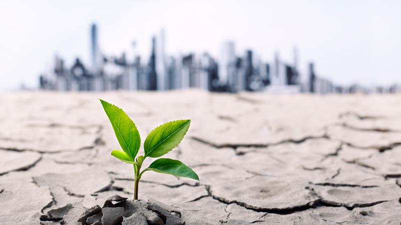 Groupe ABS se dote d'une politique de développement durable
